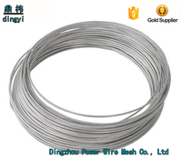 Hebei manufacturing best sales stainless steel wire coil/galvanised wire