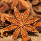 2019 new crop seasoning whole star anise seeds