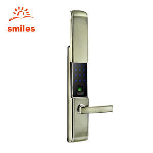 Factory Price Smart Biometric Codes Door Lock System With Cover For Cottage