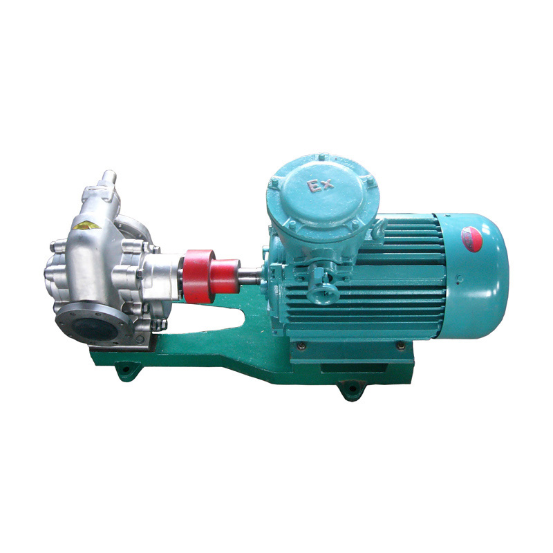 Heavy Duty Cast Iron Pump Head vegetable oil delivery gear pump