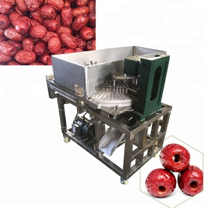 New design and hot selling date seed removing machine