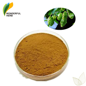 Humulus lupulus beer supplement extract flower powder hops plant