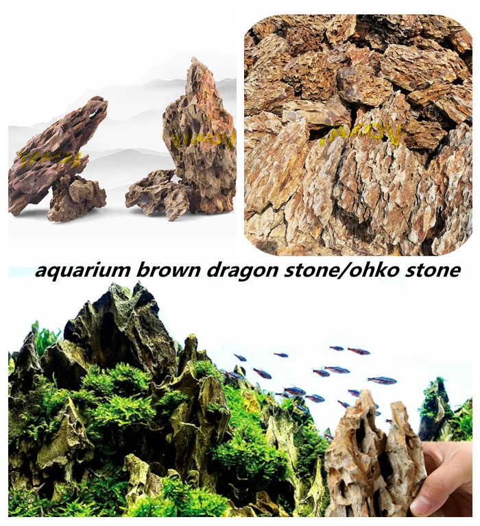 Natuurlijke ohko stone brown dragon songpi steen voor aquarium decoraties
