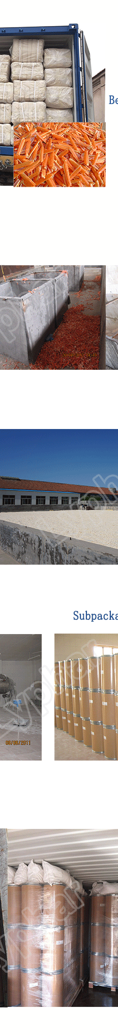 Lyphar Provide Top Quality Carboxymethyl Chitosan