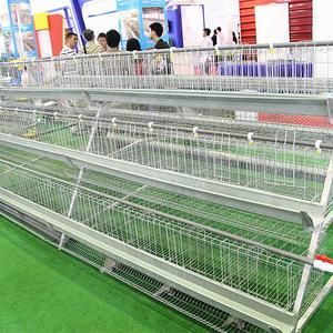 chicken layer cage/poultry farm products