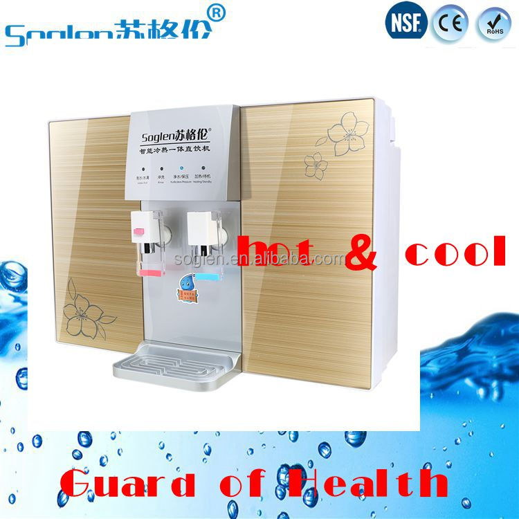 Soglen Hot and cold water dispenser with RO water filters