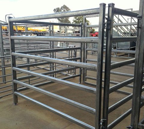 sheep / cattle / buffalo / bull/bovini / cow / corral panel / paddock fence / farm gates