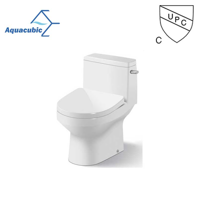 UPC washdown sanitary floor mounted dual-flush one piece toilet(AT1000)