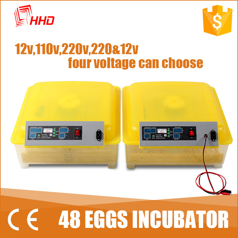 HHD guinea fowl eggs day old chicks rate egg incubator china in made YZ8-48