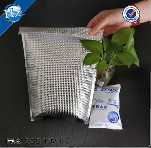 Aluminum foil foam isothermal thermal lunch vaccine cooler bag with adhesive tape
