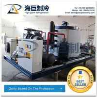 15 ton flake ice mahcin maker for disney frozen,china ice machine