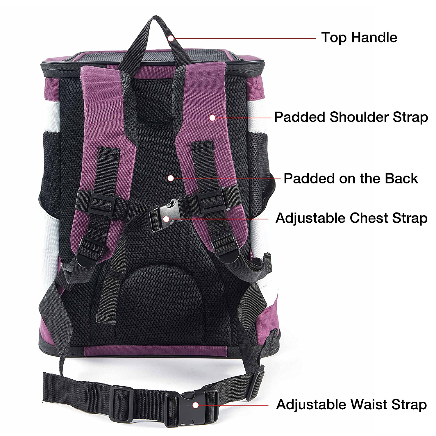 Wholesale Outdoor Soft Sided Cat Dog Collapsible Pet Carrier Travel Backpack Bag