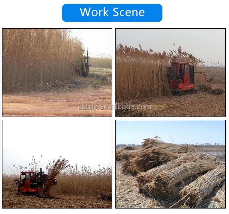 work-sence.jpg