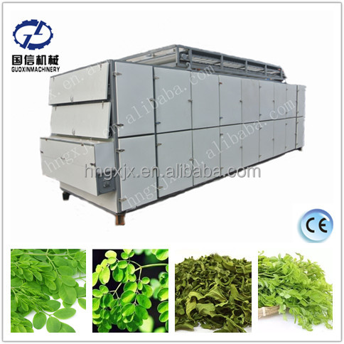GUOXIN brand made new belt dryer of moringa leaves drying machine