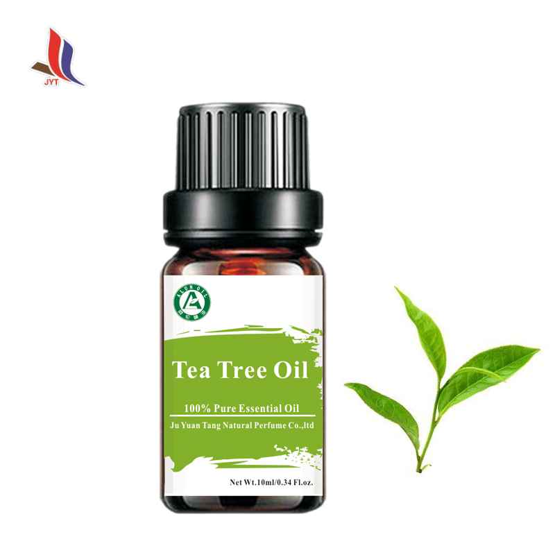 Best Prices Pure Natural Tea Tree Oil Raw Material For Cream Food Flavor Cosmetics Pharmaceutical Skin Care Products