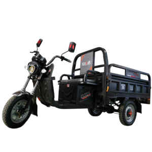 2019 BOYUNDA 3 wheel black Cargo Electric Tricycle /Rickshaw electric for cargo
