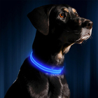 LED Usb Glow with Night Light Up Pink for Dog Cat Pet Collar Free Perro Waterproof in the Dark Halo Flashing Neon