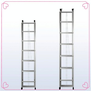 ladder with hook/aluminium hook ladder