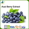 Acai Berry Extract rich in minerals iron potassium magnesium