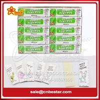 5 Sticks Mint Sugar Free Chewing Gum