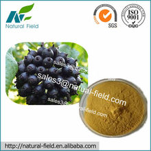 High Quality Siberian Ginseng Root Extract /Siberian Ginseng Dry extract Manufacturer