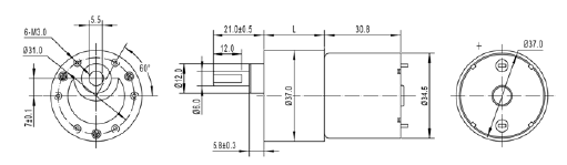 37mm Short Motor High Torque 12v Dc Motor Specifications