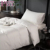 Hot Selling Luxe Japanse Hotel Winter Down Gevuld Quilt