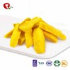 TTN Sales Mango Dried Fruit Price Mango Export Dried Mango