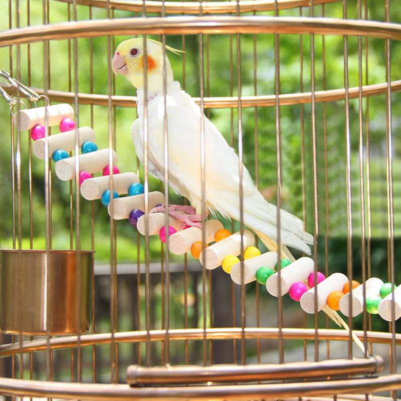 Wood Parrot Toys 41