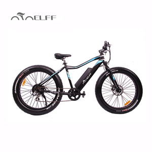 adult fat tire48v 500w electric bike outdoor electric bicycle vietnam