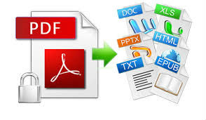 Customized PDF Conversion Service,Convert PDF Files to HTML,XML and ASCII Formats,PDF File Conversion to MS Word, Excel, Access