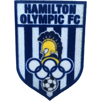 1604dc5cb0a factory direct 3d flock tatami soccer patch soccer jersey patch iron on  patches