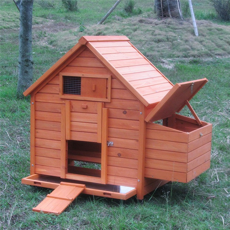 Small chicken coop cheap chicken coop hen house for sale for Small chicken house plans