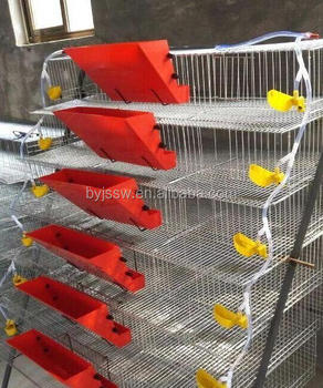 Poultry Farming Equipment Quail Farming Quail Cage For Egg ...