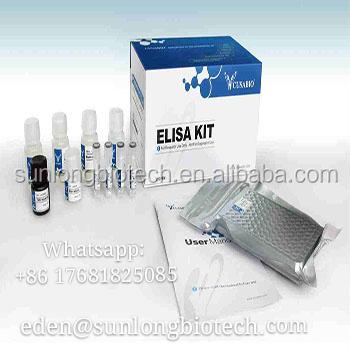 Cusabio 2 Gelatinase MMP2 A