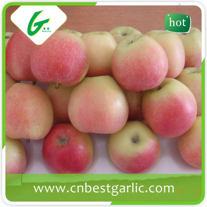 Fresh Fruit Royal Delicious Sweet Gala Apples