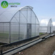 Agricultural high tunnel plastic used greenhouse equipment for sale