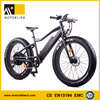 Motorlife 36v 350w /48v 1000w fat tyre electric bike,snow electric bike 27 speed