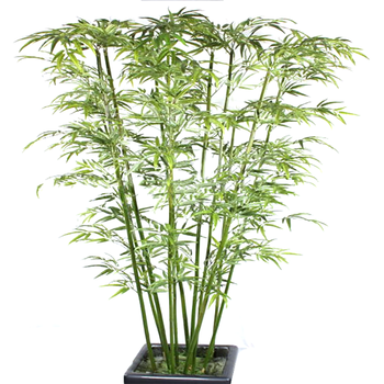 Outdoor Plants For Sale.Plastic Outdoor Decorative Artificial Bamboo Plants For Sale Buy Artificial Bamboo Decorative Fake Bamboo Artificial Bamboo Plant Outdoor Product On