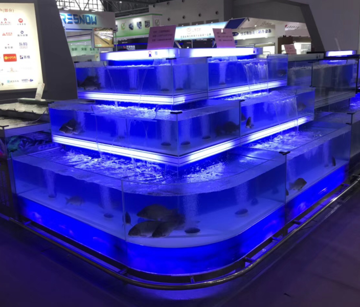 Dingfeng aangepaste chiller supermarkt of restaurant 3 lagen met licht grote commerciële aquarium marine aquarium