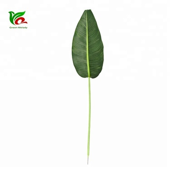 Fabric Traveller Tree Leaf Artificial Large Artificial Tropical Palm Leaves Cloth Banana Leaves Buy Fake Foliage Botanical Names Of Leaves Banana Leaves Indoor Decoration Leaves Product On Alibaba Com Set of beautiful tropical leaves and flowers on white background. alibaba com
