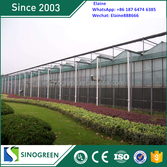 SinoGreen stronger structures muti-span polycarbonate green house greenhouse farming equipment