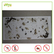 customize Safety reusable fly insect glue traps make fly & mosquito glue trap
