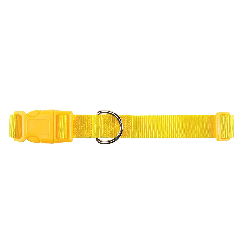 Zack & Zoey Nylon Pet Pet Collar - Yellow