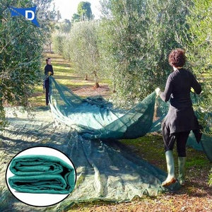Wholesale New olive collection fruit tree netting