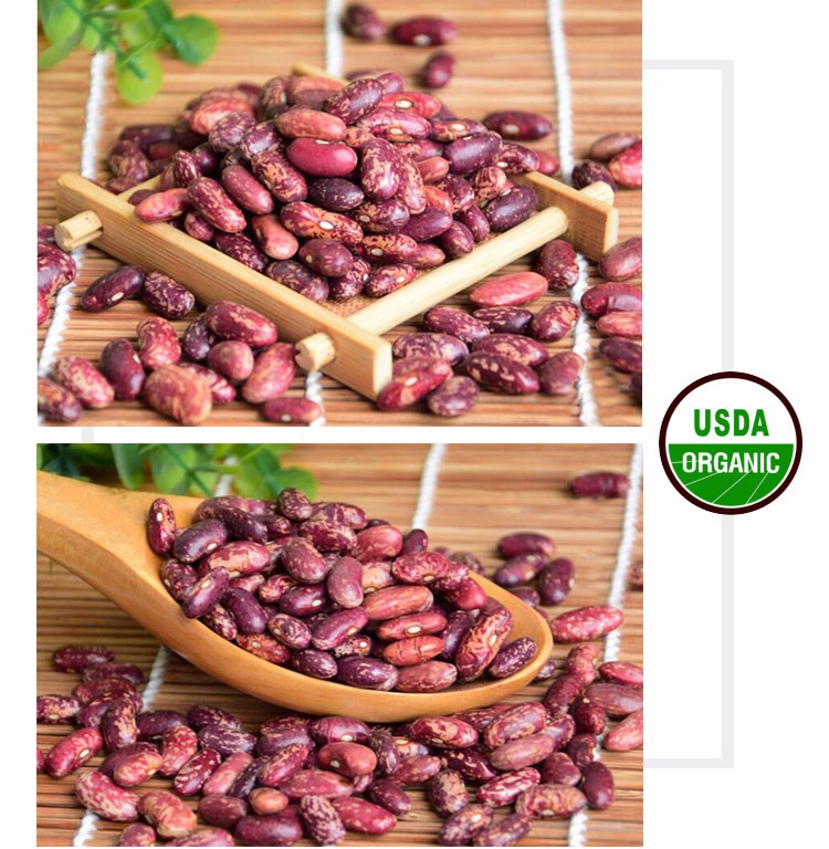 Grade A new crop red speckled kidney beans