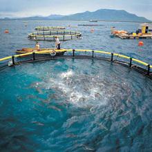 Promoci n jaula de piscicultura compras online de jaula for Jaulas flotantes para piscicultura