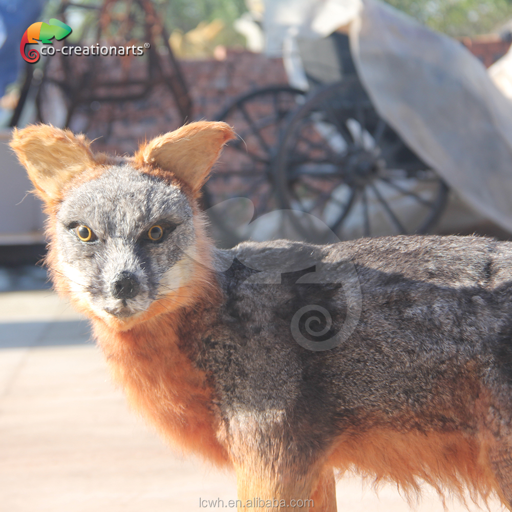 realistic simulation jackal animals model
