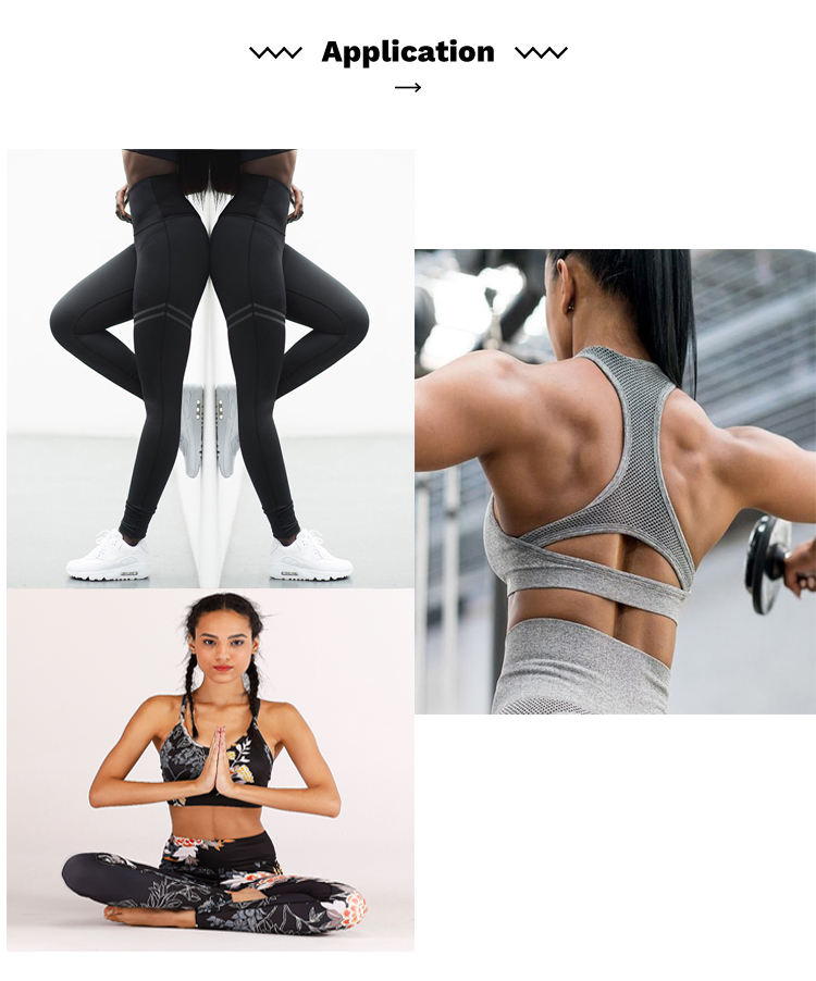 Women Fitness Wear Jogging Tracksuit Seamless Sport Sexy Yoga Bra