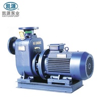BZ Electric Transfer Pump Self Priming Centrifugal Pump Suck Water Pump